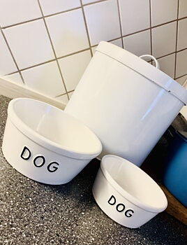 The dog's big food and water bowl