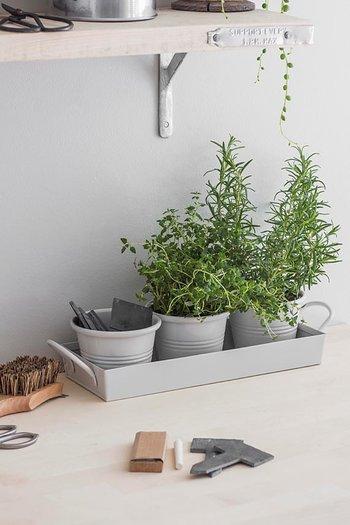 Garden Trading Trio av Krukor Chalk (Kritvit)