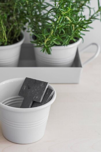 Garden Trading Set of 3 Pots on a Tray in Chalk