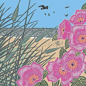 Nature Trail : Sand dunes - kort med kuvert