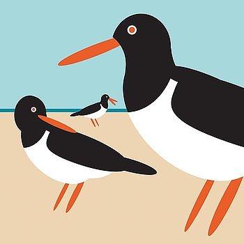 I like birds : Oystercatcher/Strandskata - kort med kuvert