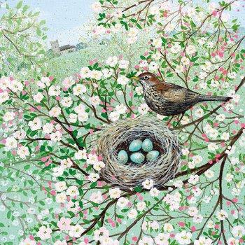 Lucy Grossmith : Blossom and Blackbird - kort med kuvert