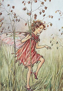 Flower Fairies : The Totter-Grass Fairy - Minikort med kuvert