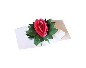 Simply a rose : Popup-kort med ros som vecklar ut sig - rosa