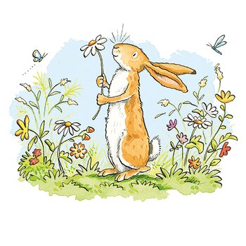 Anita Jeram : Colours everywhere - kort med kuvert