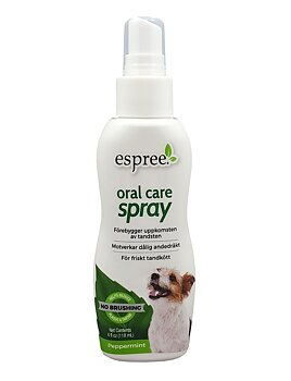 Oral Care Spray – Peppermint