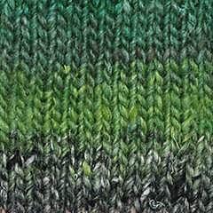 Silk Garden Sock  Tahara 493