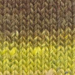 Silk Garden Sock  Kadoma 467