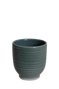 Grön Kruka Vass (Flera storlekar)