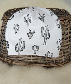 Mössa kaktus 2-3 år