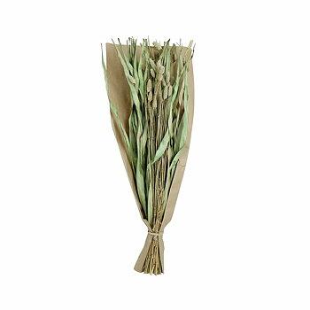 Torkad Bukett Kanariegräs