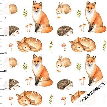 FOX WOODLAND