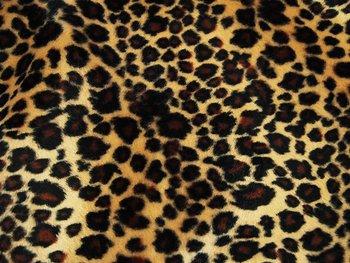 Leopard Sammet