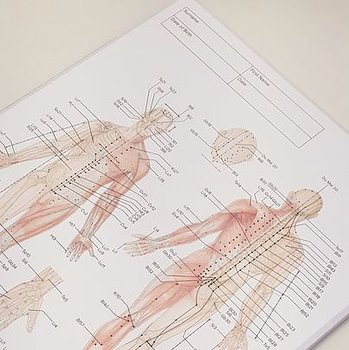 Patientkort - Acupuncture and Meridian Notepad