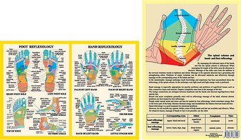 Hand and Foot Reflexology Chart, plansch A4