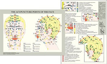 Ansikts- och skall-akupunktur Acupuncture points of the face A4