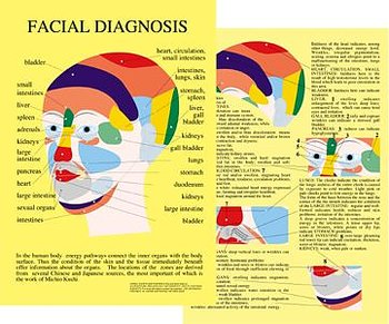 Ansiktsdiagnostik - Facial Diagnosis A4