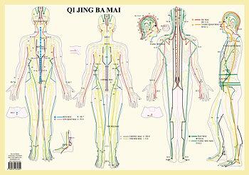 Qi Jing Ba Mai - Extraordinära meridianer-A2