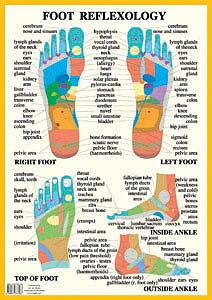 Foot reflexology Chart, plansch A2