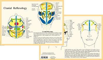 Kranial reflexiologi - Cranial Reflexology, A4