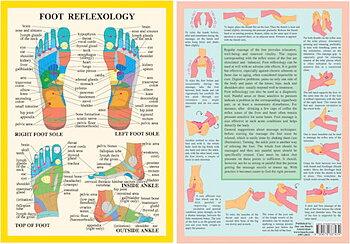 Foot reflexology Chart, plansch A4