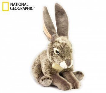 National Geographic: Hare
