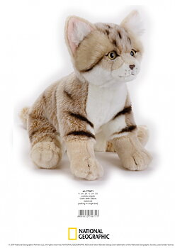 National Geographic Kids: Sand katt