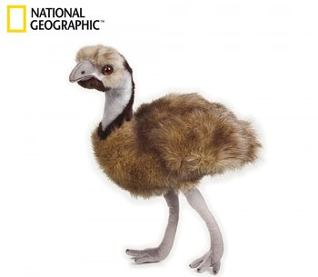 National Geographic: Emu