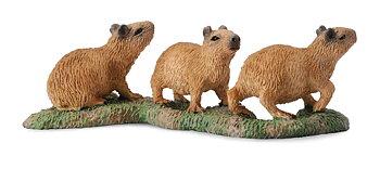 Kapybara ungar