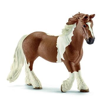 Tinkerhäst, sto