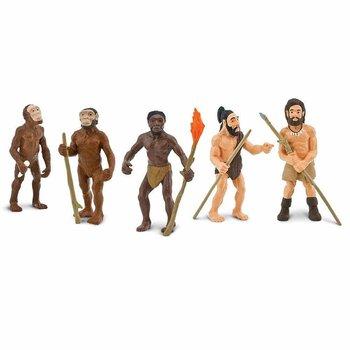 Människans utveckling Safariology®