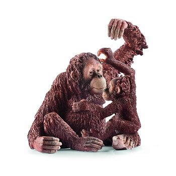Orangutangunge