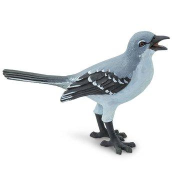 Nordhärmtrast (mockingbird)