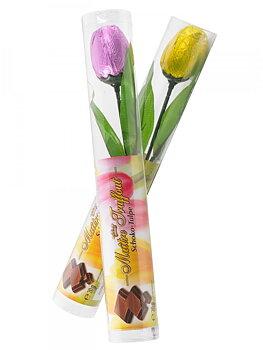 Milchschokolade Tulpe