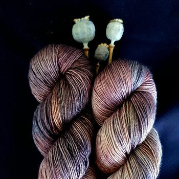 Emelilyknits Dreamy Silk 100g Saving Seeds