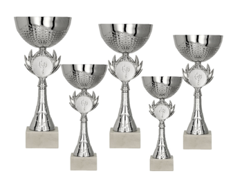 Pokal Luleå