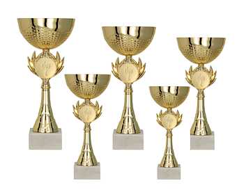 Pokal Uppsala