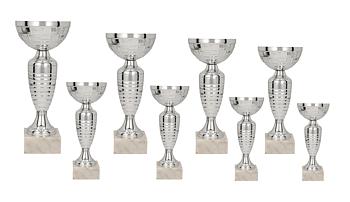 Pokal Warszawa inklusive gravyr!