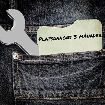 Platsannons 3 mån (OBS! Formulär måste fyllas i innan köp Klicka på bilden)